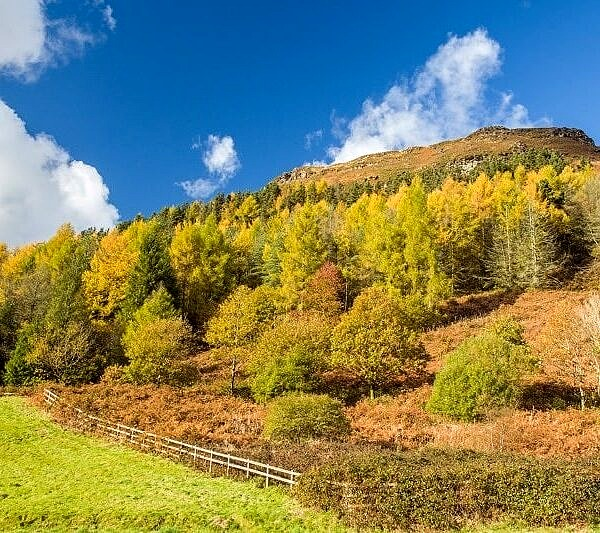 The south face of Pen Pych above Blaencwm Rhondda