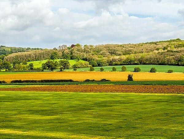 Rural Scene near Hailes Abbey