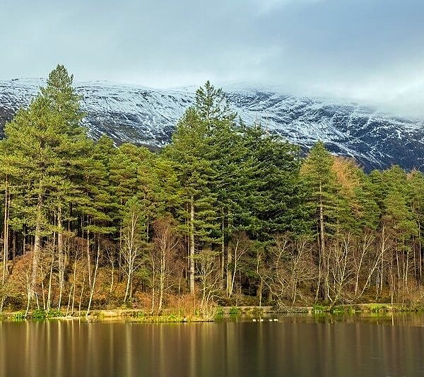 Glencoe Lochan in Winter