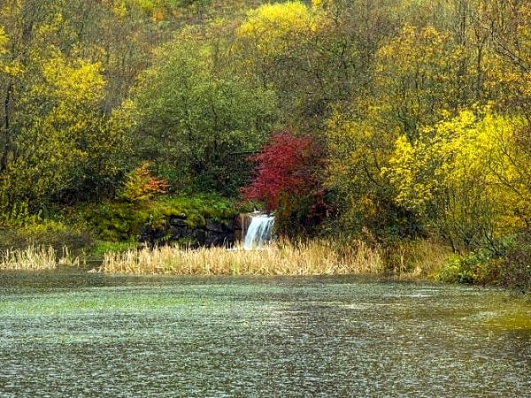 Clydach Vale Upper Pond in Autumn