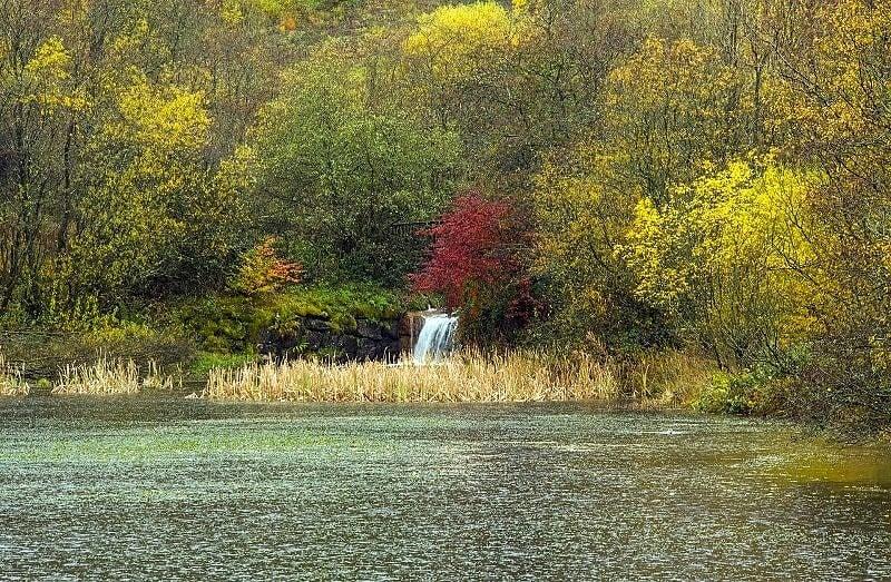 Clydach Vale Upper Pond in Autumn