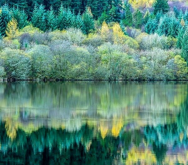 Reflections in Llwyn Onn Reservoir