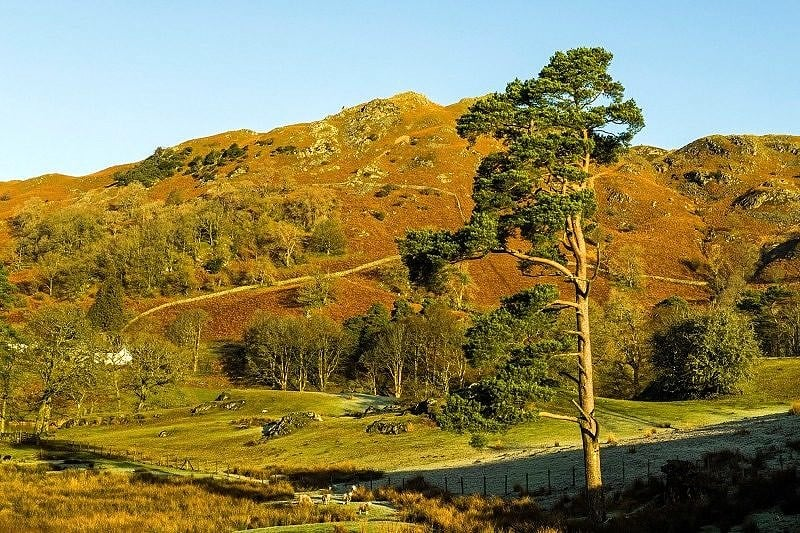 Loughrigg Fell Lake District