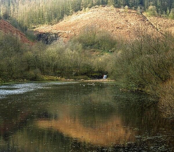 The Upper Pond Clydach Vale