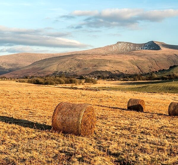Pen y Fan seen from Mynydd Illtyd Common Brecon Beacons